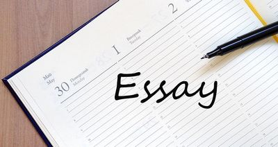 Within 24 Hrs Essay Pitfall  will find the best